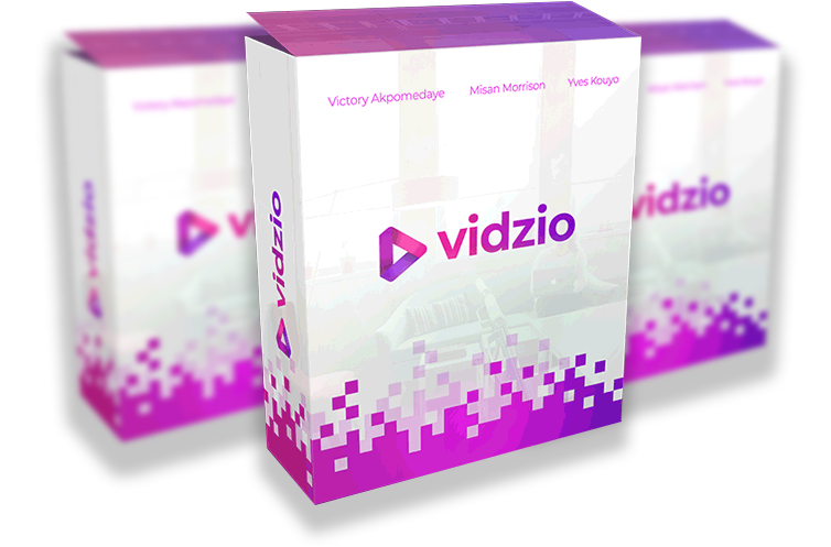 VidZio Review