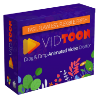 Vidtoon Review